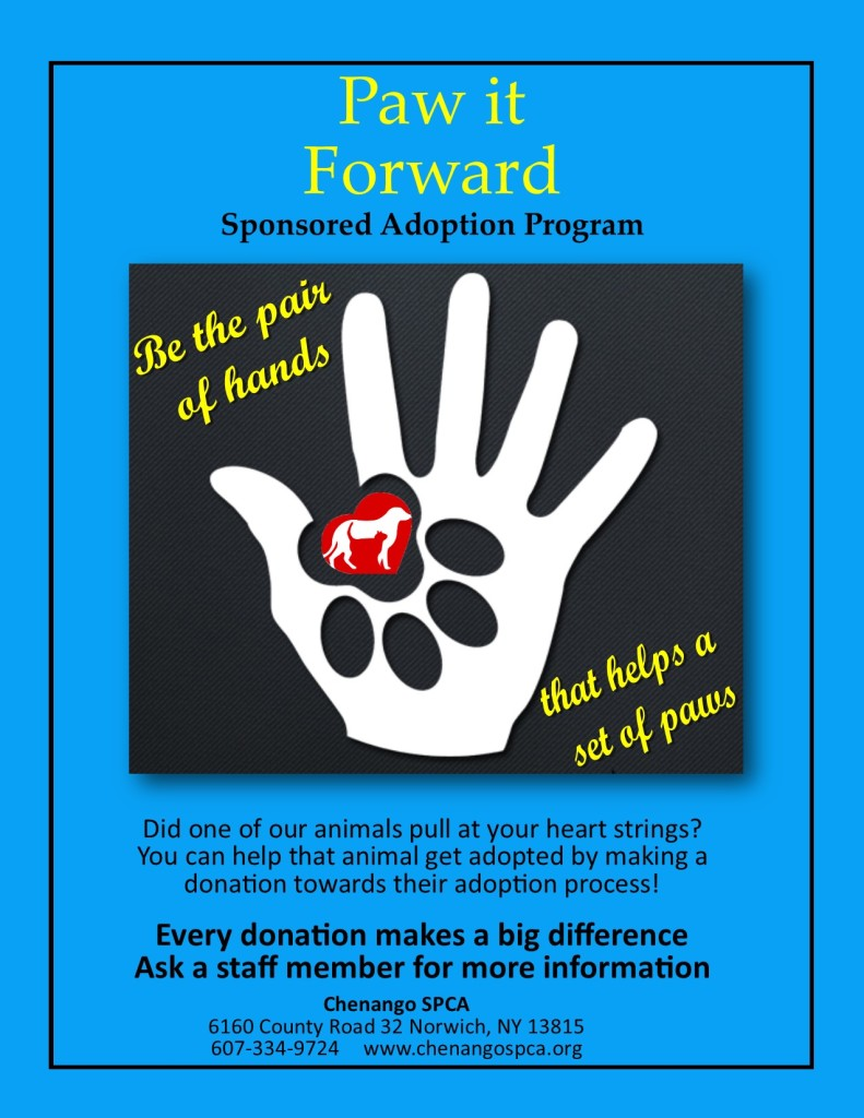 paw it forward- Flyer