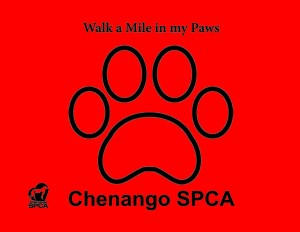 walk a mile in my paws.pdf